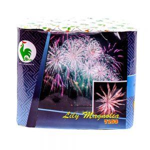 Torta Lilly Magnolia 25s